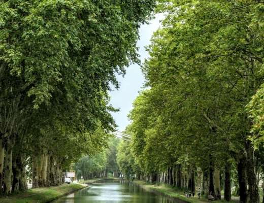 Take a barge cruise: Panache on a canal