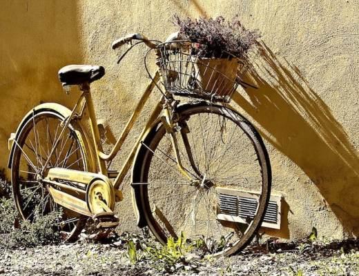 Bella Mossa: Biking in Bologna