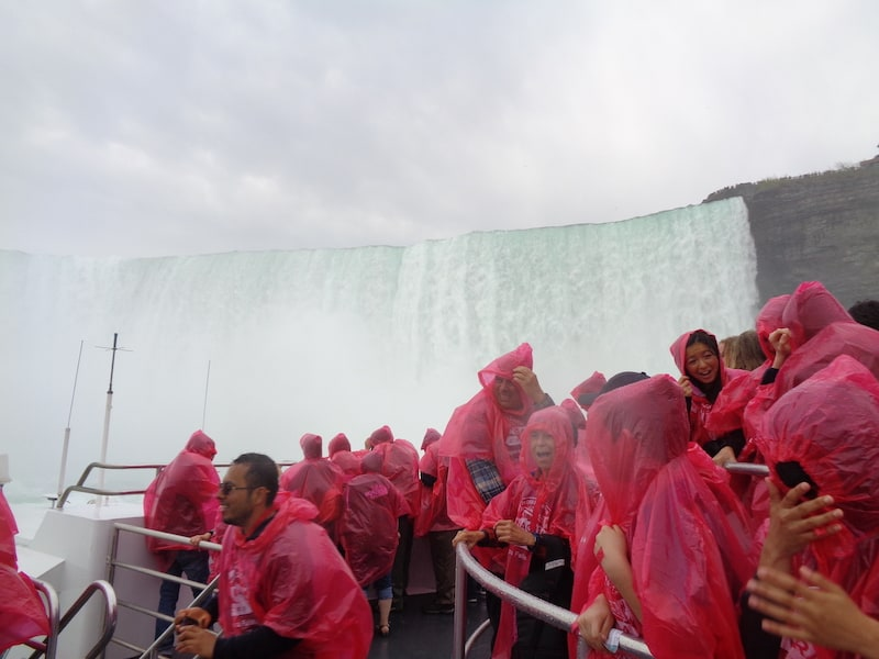 Niagara Falls: Wet...and loving it