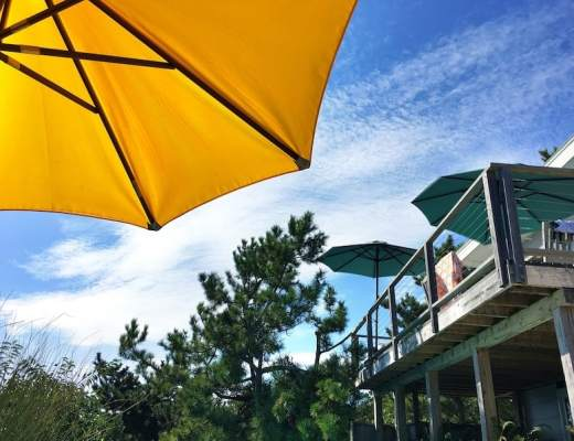 What to do on Fire Island
