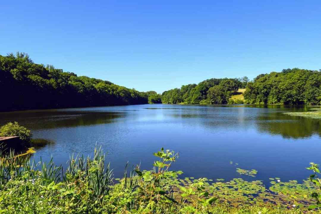 Swan Lake at Rockefeller State Park Preserve, one of our favorite walking