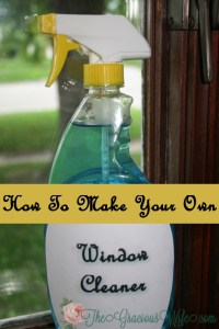 DIY Cleaning Products window cleaner