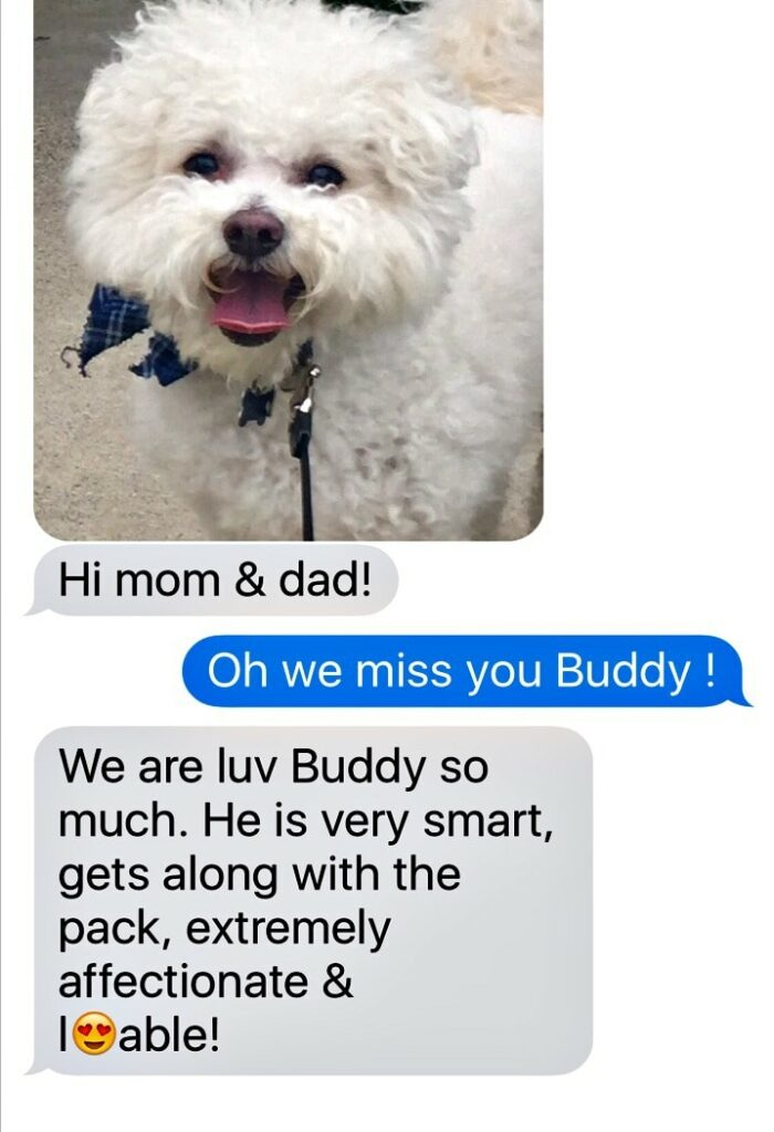 a text message from buddy