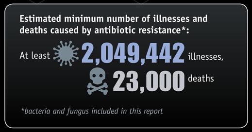 new antibiotic