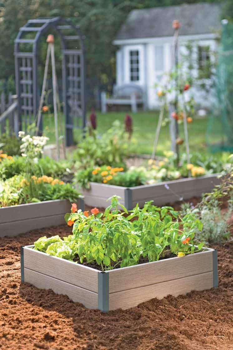 Best Way Build Raised Vegetable Garden