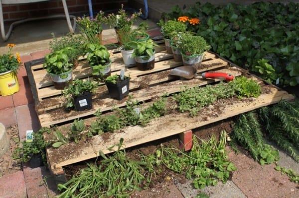 above ground pallet garden bed pgi35 - Pallet Garden Bed