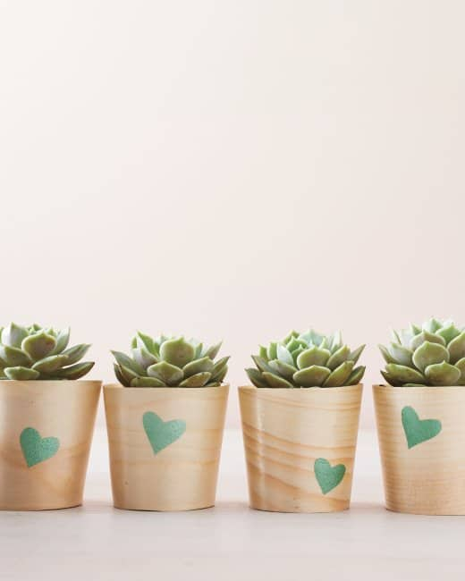 67 DIY Succulent Planter Ideas Everyone Can Try