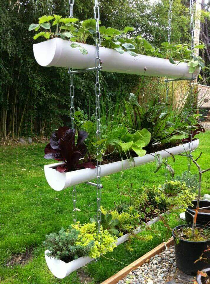 Attrayant Inexpensive PVC Pipe Hanging Vegetable Garden