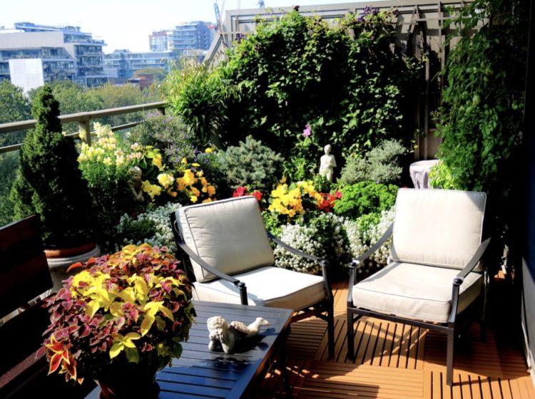 Home Balcony Garden Ideas