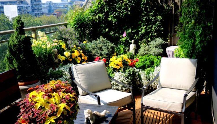 balcony garden. balcony garden ideas you can\u0027t-miss out e