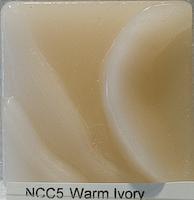 20090831-ncc5