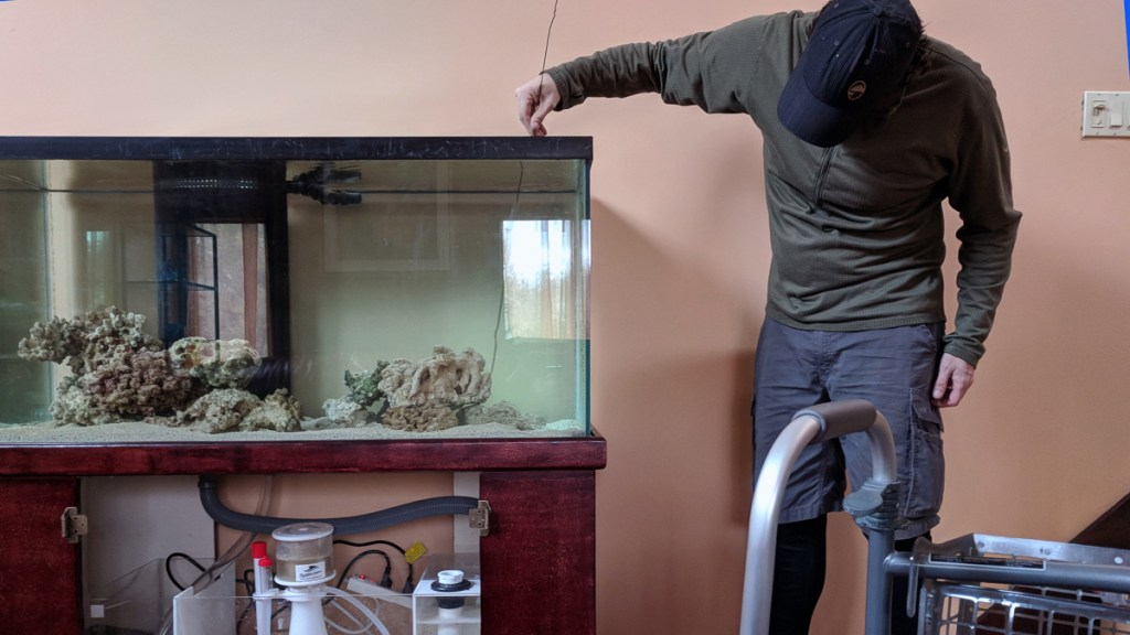 aquascaping a marine reef aquarium