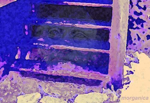 maystairs