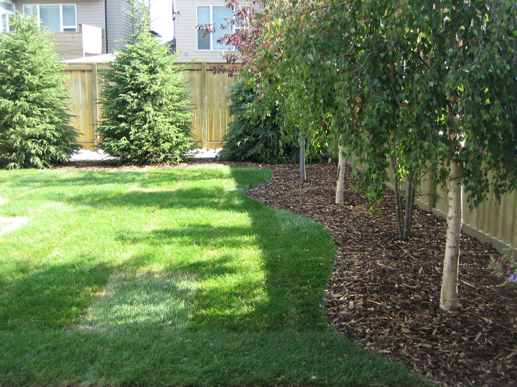 Scaping Capital: Arizona backyard landscaping pictures ... on Best Backyard Landscaping id=95762