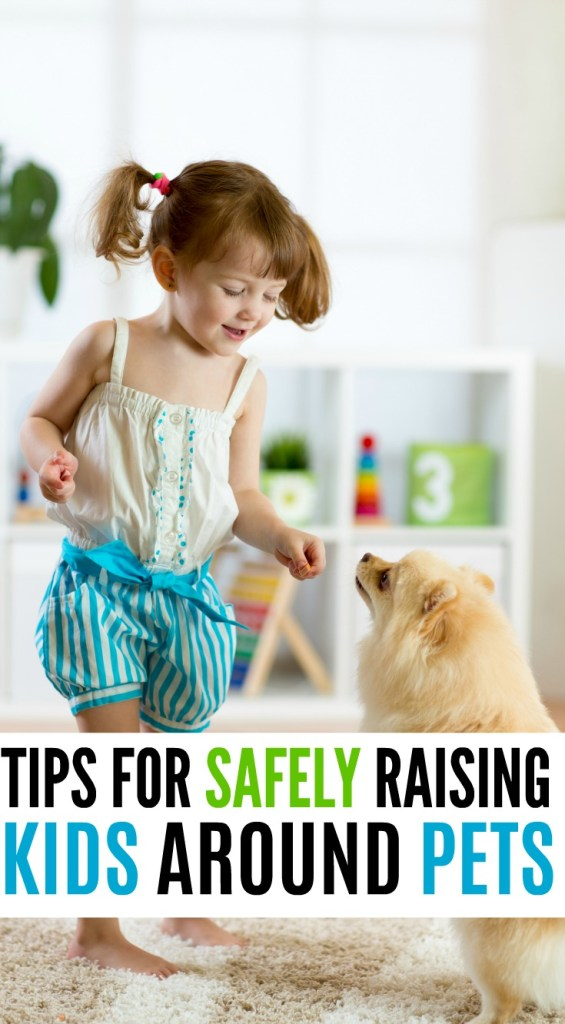 tips for safely raising kids around pets, kids and pets, dogs and toddlers, family dog, family cat, cat tips, parenting tips, toddler tips,
