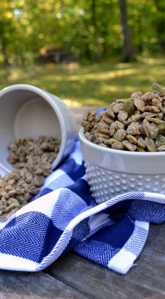 candied pepitas in a grey bowl on a blue gingham dish towel outside on a wooden table
