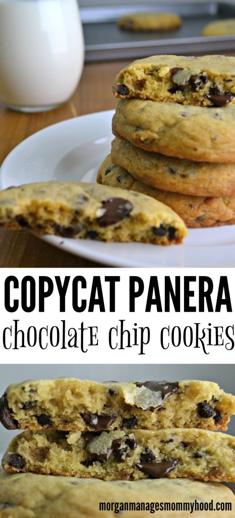 The perfect oversized chocolate chip cookie, this recipe for Copycat Panera Chocolate Chip Cookies is going to be your new go-to.