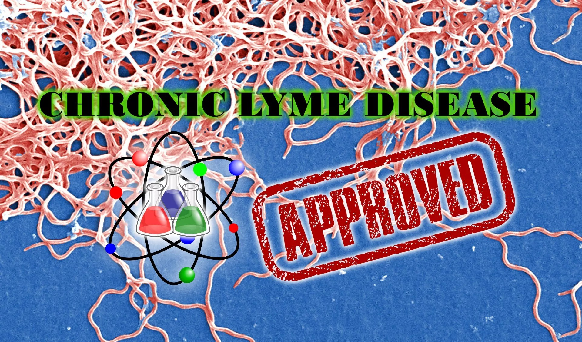 Chronic Lyme Disease: a Case Definition at Last