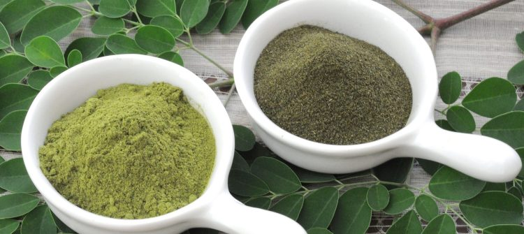 Moringa Powder Bulk, Why Is It Good to Consume