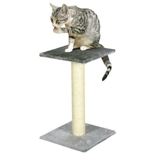 Anais - Arbre à chat