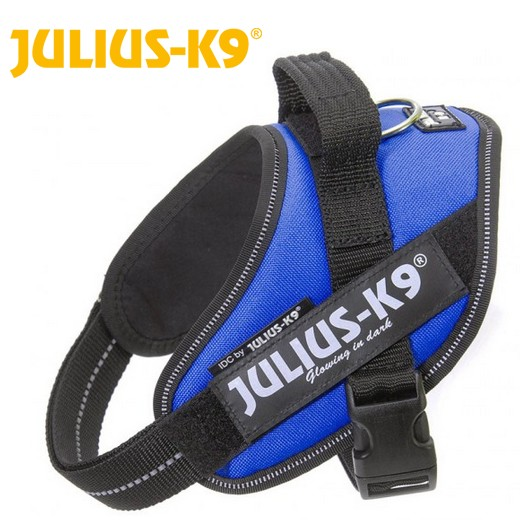 Harnais IDC POWER Julius K9 - BLEU
