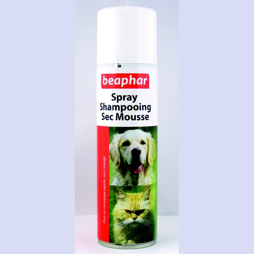 Shampooing sec mousse sans rinçage pour chiens et chats.