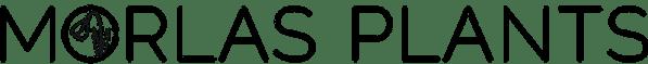 morlas-logo-sm