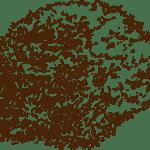 compost-161895
