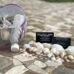 Seashells, Trash, and the Book of Mormon Teachings on Karma