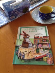 Velveteen Rabbit 3