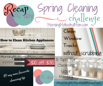 30 Day Spring Cleaning Challenge Recap