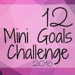 12 Mini Goals Challenge