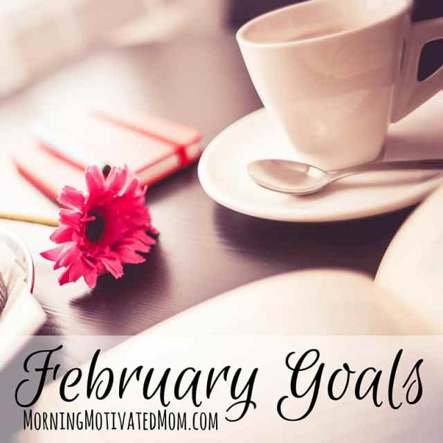 Monthly Goals: February