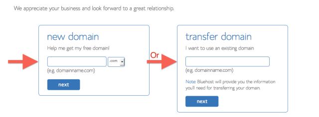 3-Bluehost Domain Registration