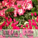 Monthly Goals – June