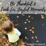 November Mini Goal: Be Thankful and Look for Joyful Moments