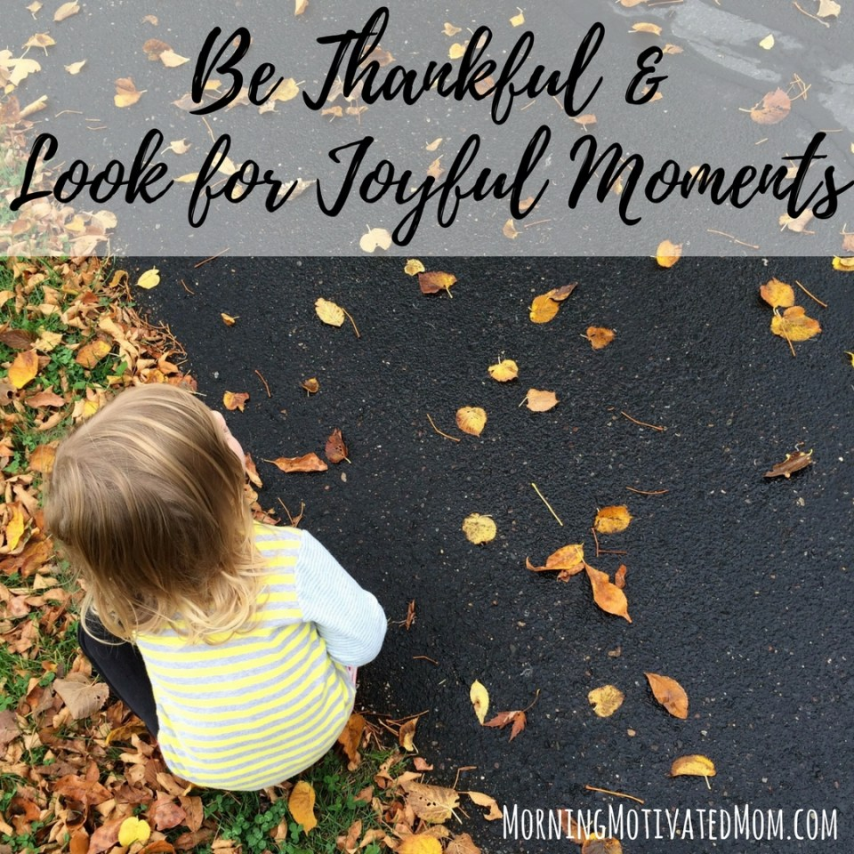 Be Thankful and Look for Joyful Moments