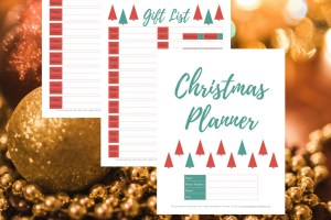 Get organized this Christmas! Christmas Planner. Holiday Planner.