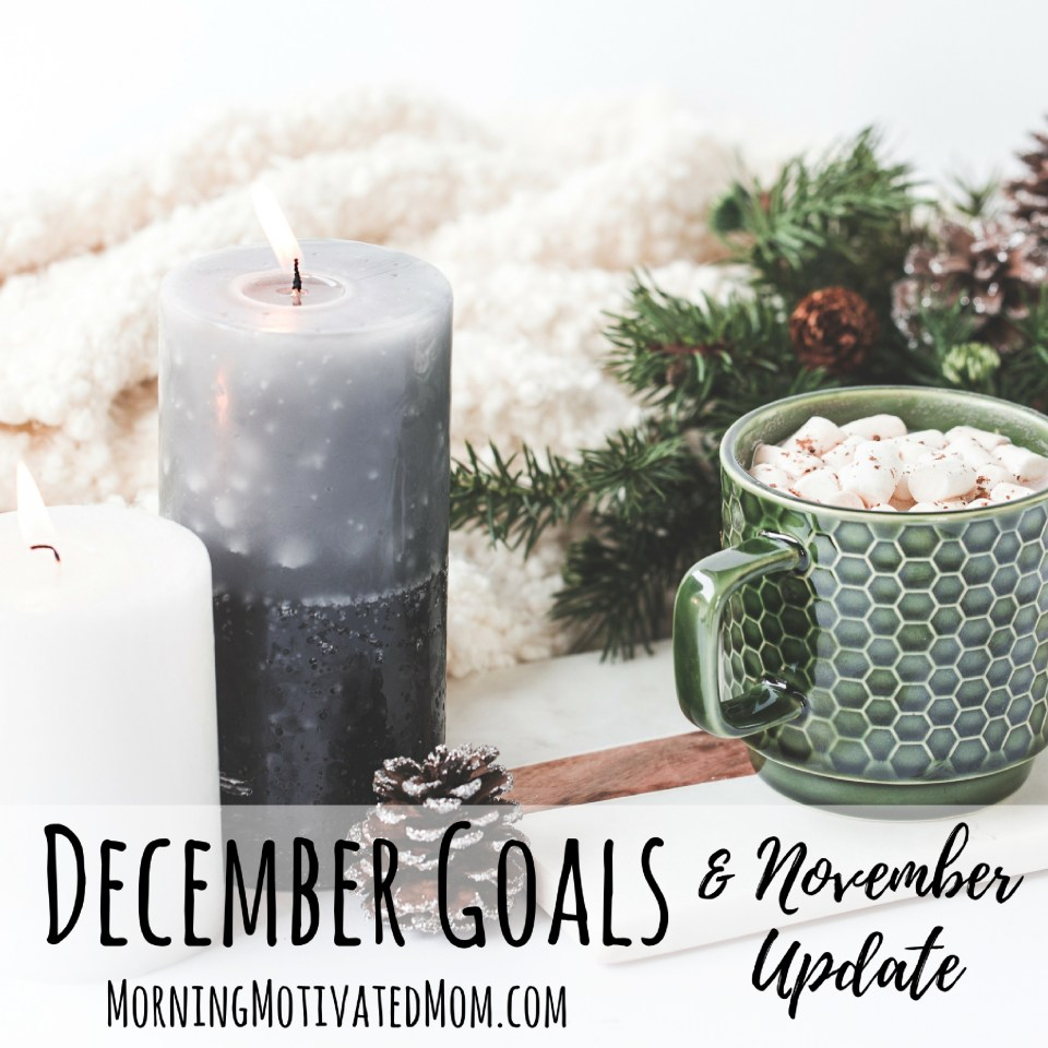 Monthly Goals for December and 7 Steps for Taking Control of 2017.