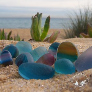 Mornington Sea Glass English Multis with copyright