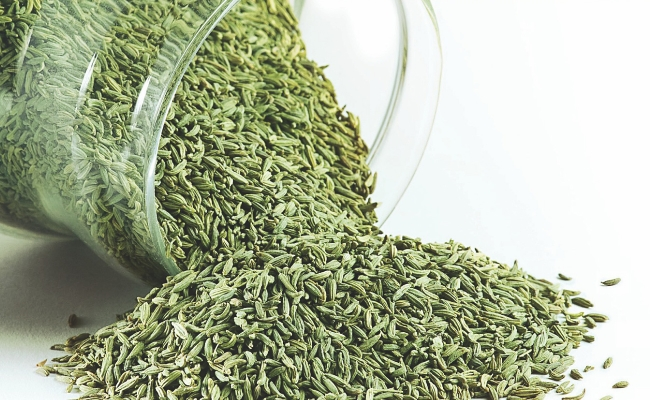 Chew fennel seeds