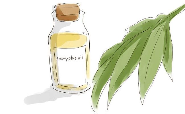 Inhale Eucalyptus Oil