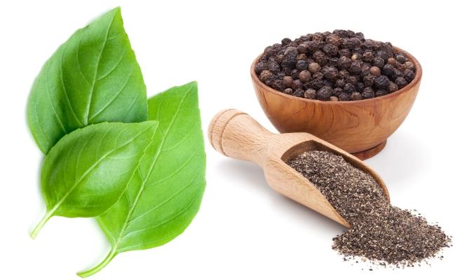 Basil Leaves And Black Pepper