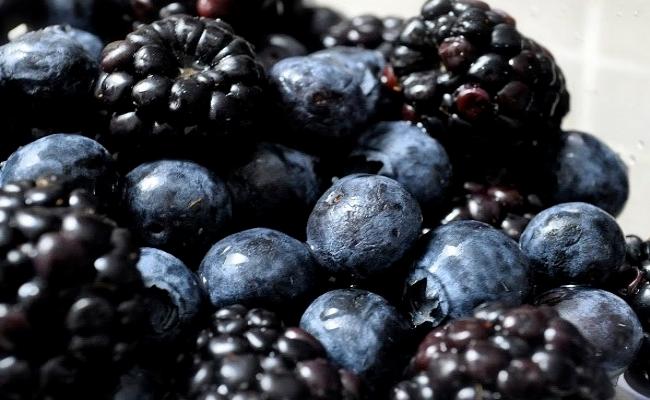 Dark Colored Berries