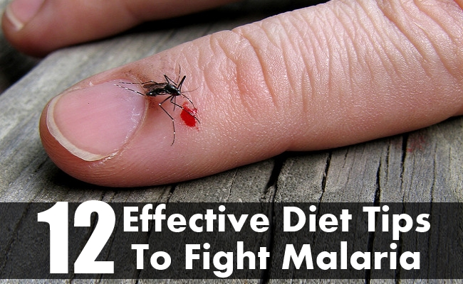 Effective Diet Tips To Fight Malaria