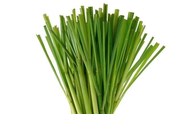 Lemon Grass Steam