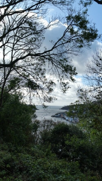 The view looking out over the Fowey estuary from the path known as Hall Walk