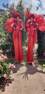 20181117 121539 e1549885116621 146x300 - International Rose Garden Festival