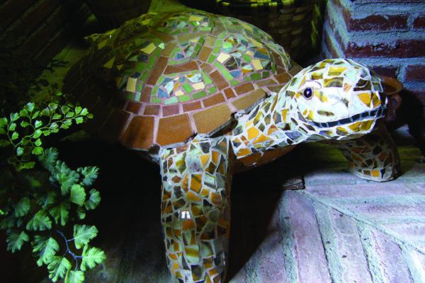 Brown turtle, 70cm x 18cm,  25kg.