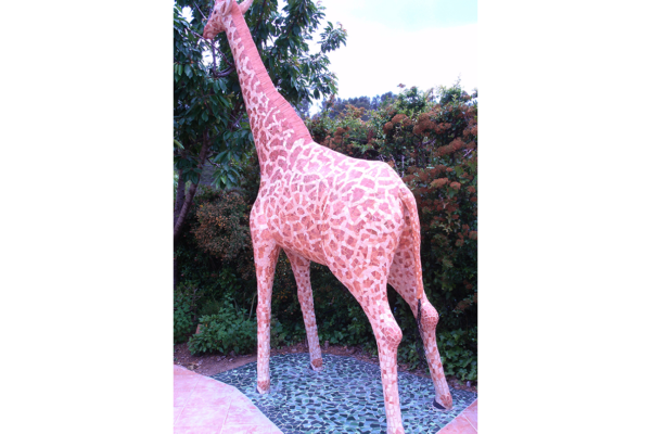 Giraffe , 3'70m high, 470kg., private house, Barcelona.
